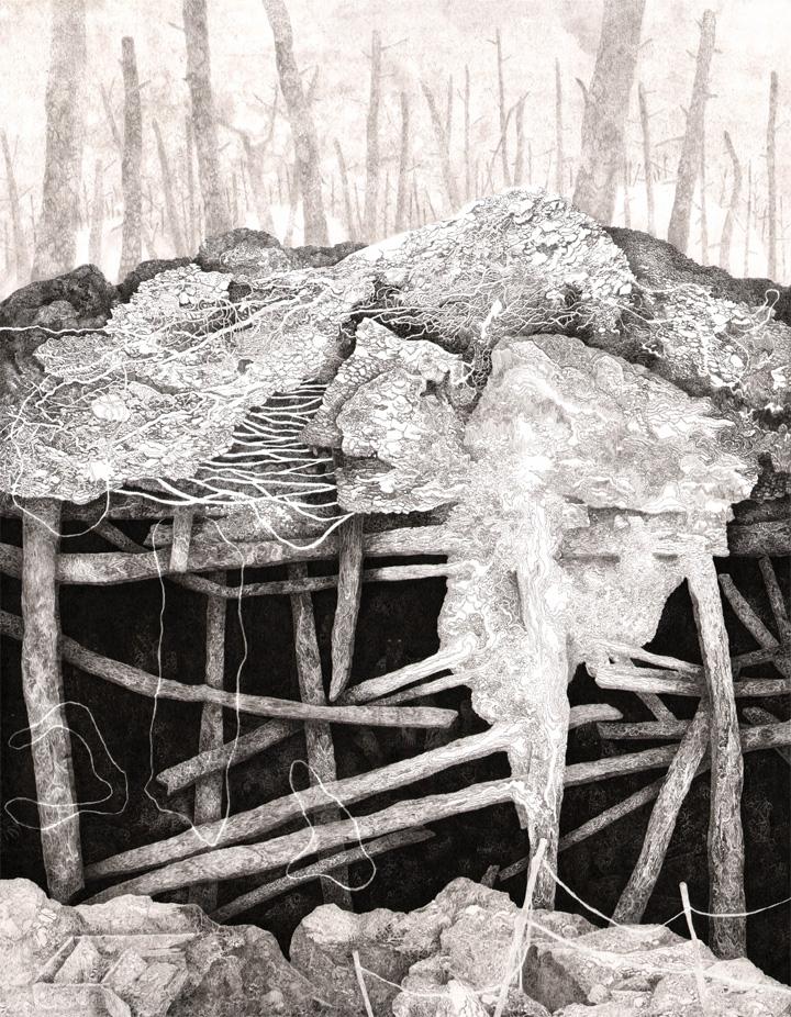 Dissous avec leurs secrets, encres sur papier, 60 x 50 cm, 2017